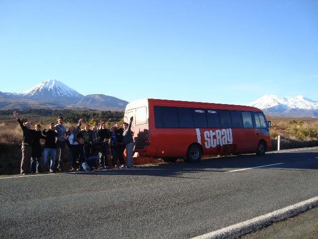 bus-travel-new-zealand